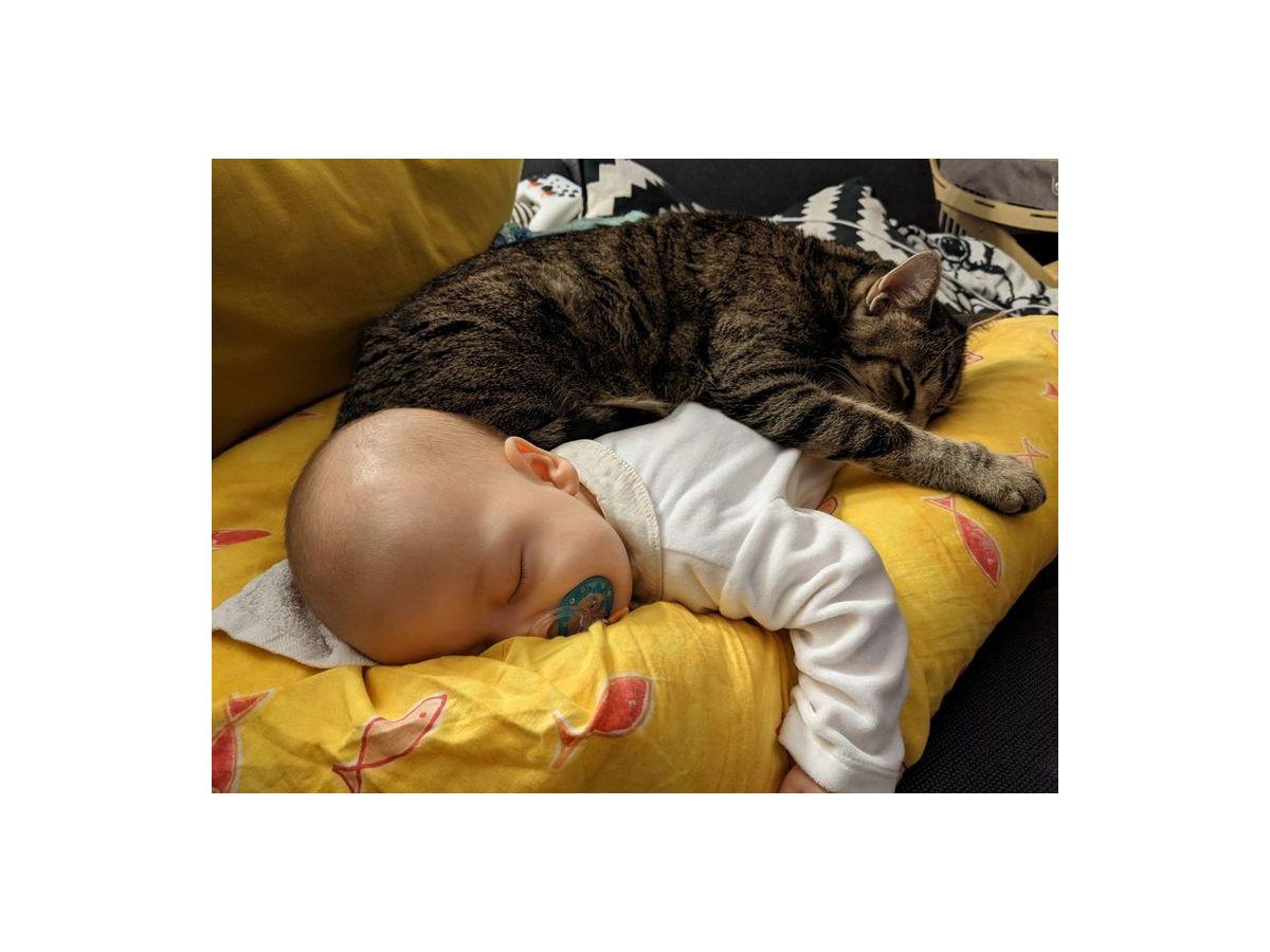 Babyschlaf -